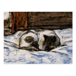 Gato que duerme en una cama tarjetas postales