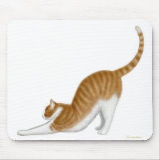 Gato que estira Mousepad Tapetes De Ratón