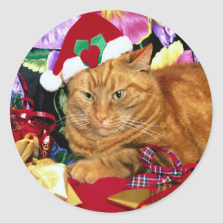 Gato que lleva el gorra de Papá Noel - pegatina