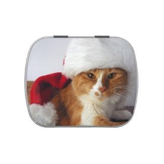 Gato que lleva el gorra de Santa Latas De Dulces