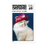 Gato que lleva un sello del gorra por BestPeople