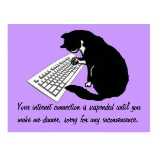 Gato que mecanografía tarjetas postales