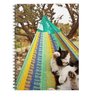 Gato que miente en hamaca mexicana maya libro de apuntes con espiral