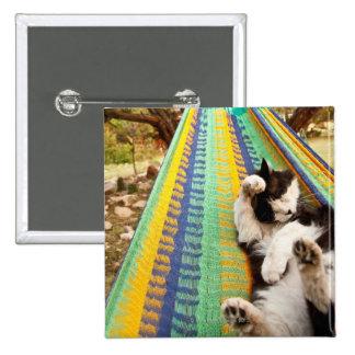 Gato que miente en hamaca mexicana maya pin cuadrado