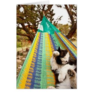 Gato que miente en hamaca mexicana maya tarjetón