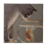 Gato que mira el cuenco del Goldfish Teja Ceramica