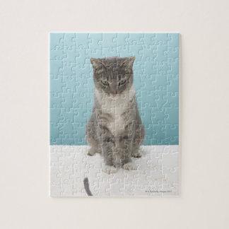 Gato que mira el ratón del juguete en la manta puzzle