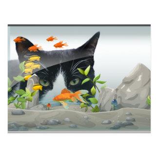 Gato que mira en acuario postales