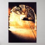 Gato que mira en el agujero del ratón poster
