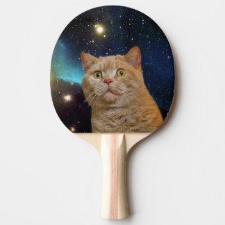 Gato que mira fijamente el universo pala de tenis de mesa