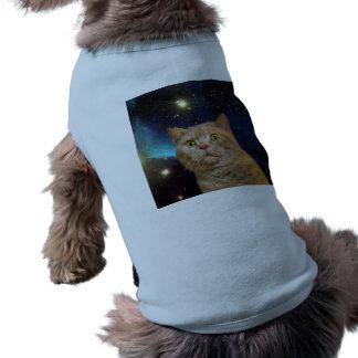 Gato que mira fijamente el universo playera sin mangas para perro