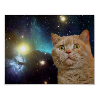 Gato que mira fijamente el universo póster