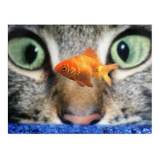Gato que observa encima de un Goldfish Tarjeta Postal