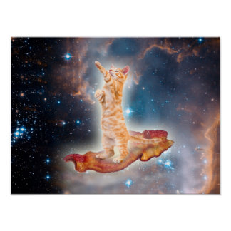 Gato que practica surf del tocino en el universo póster