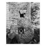 Gato que se coloca en la rueda de piedra vieja póster