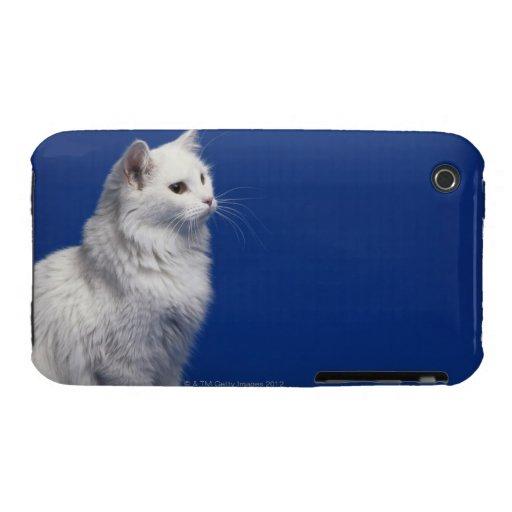 Gato que se sienta contra fondo azul funda bareyly there para iPhone 3 de Case-Mate
