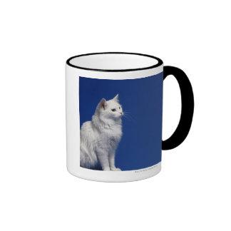 Gato que se sienta contra fondo azul taza de dos colores