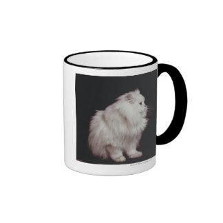 Gato que se sienta en el fondo negro, primer taza de dos colores