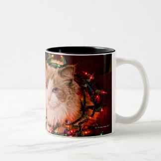 Gato que se sienta en una bola de las luces de taza de dos tonos