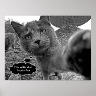 Gato que toma el poster de Purrfect Selfie