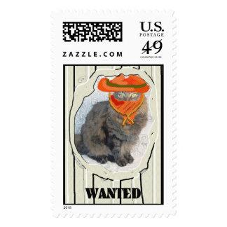Gato querido sellos postales