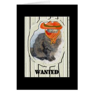 Gato querido tarjeta de felicitación