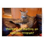 Gato - quiera ejercitar la tarjeta de cumpleaños