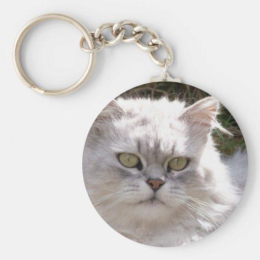 Gato (Ragamuffin) Llavero Personalizado