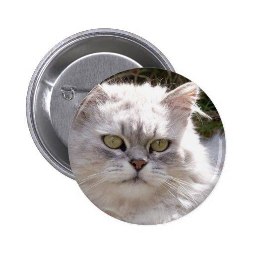 Gato (Ragamuffin) Pin