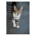 Gato rayado plantillas de tarjetas de visita