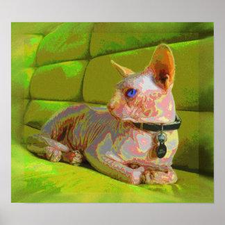 gato real del sphynx en un sofá verde póster