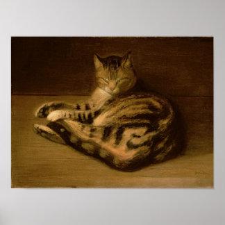 Gato reclinado, 1898 impresiones