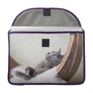 Gato relajado funda macbook pro
