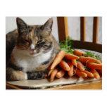 """Gato """"rojo"""" con las zanahorias tarjetas postales"""