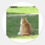¡Gato rojo soñoliento - déjeme IR y DORMIR! Pegatinas Redondas