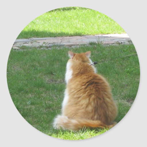¡Gato rojo soñoliento - déjeme IR y DORMIR! Etiqueta Redonda