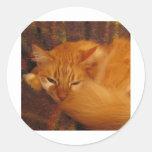 ¿Gato rojo soñoliento - usted finalmente déjeme Pegatina Redonda