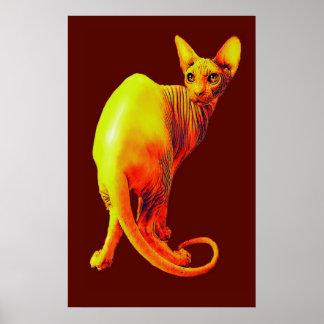 gato rojo y anaranjado del sphynx impresiones