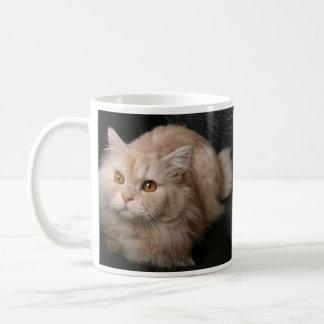 Gato rubio taza clásica