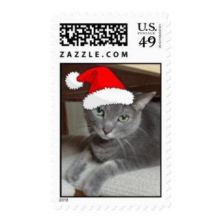 Gato ruso del gris azul del navidad sellos
