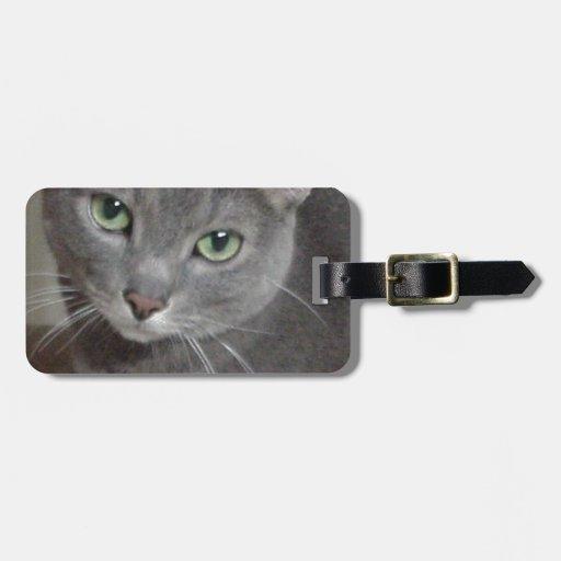 Gato ruso del gris azul etiquetas bolsas