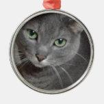 Gato ruso del gris azul ornamento de reyes magos