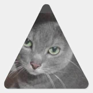 Gato ruso del gris azul colcomanias triangulo personalizadas
