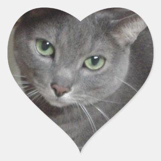 Gato ruso del gris azul pegatinas de corazon personalizadas