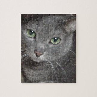 Gato ruso del gris azul puzzles con fotos