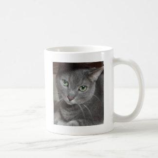 Gato ruso del gris azul taza