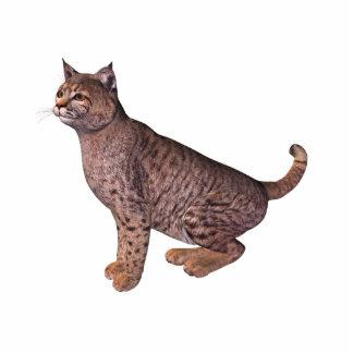 gato salvaje fotoescultura vertical