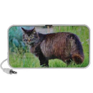Gato salvaje que camina en la hierba mini altavoces