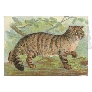 Gato salvaje tarjeta de felicitación
