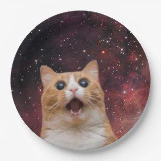 gato scaredy en espacio platos de papel